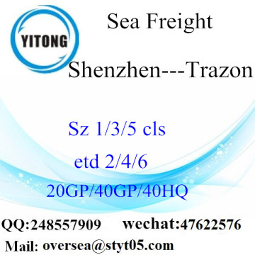 Shenzhen Port Sea Freight Shipping To Trazon