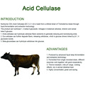 Acid Cellulase for improves animal`s digestibility