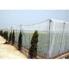 high quality anti insect net