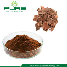 GMP Certified Natural Rhodiola Rose Extract
