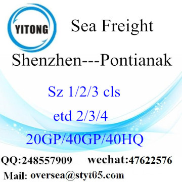 Shenzhen Port Sea Freight Shipping To  Pontianak