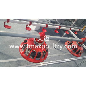 Poultry Farming Equipment Feeding Line