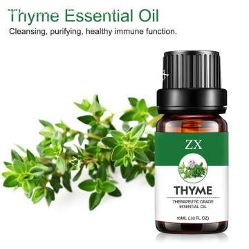 100% pure and natural thyme essential oil for Antibacterial and antiviral
