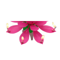 Decorations Candles Creative Large Lotus Music Candles