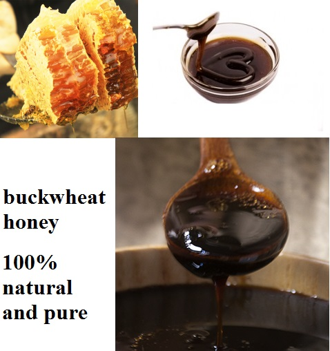 Buckwheat Honey16