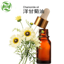 100% Original Factory for Flower Essential Oil Pure Natural Organic Roman Chamomile Essential Oil export to Italy Suppliers
