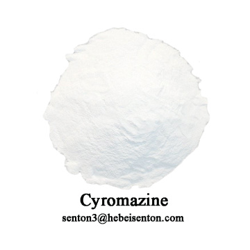 Europe style for Agrochemical Crop Protection Insecticide, White  Powder Insecticide Cyromazine, Cyromazine Poison To Kill Flies Wholesale from China Veterinary And Insect Growth Regulator export to Indonesia Supplier
