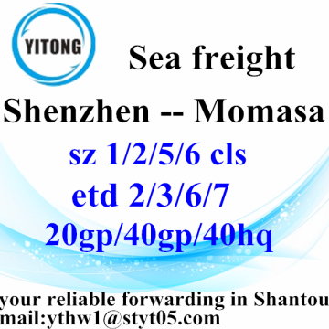 Shenzhen Container Shipping Service to Momasa