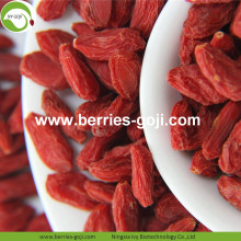 Buy Natural Nutrition Dried Fruit Chinese Wolfberry