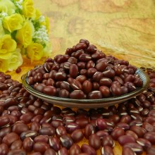 Natural and Organically Grown Small Round Red Bean