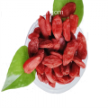 New harvest export goji berries with low calories