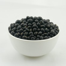 Quality for Black Soy Beans For Sprouts Big Black Bean With Good Quality supply to Maldives Manufacturers