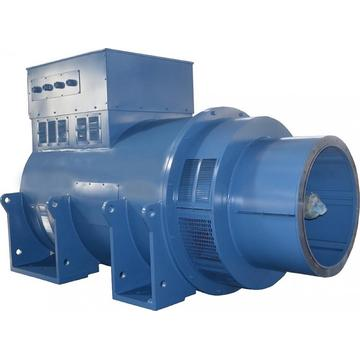 TH Series High Voltage 2000kW 7.2KV Alternators
