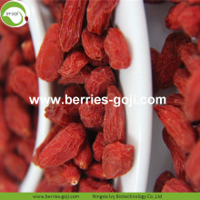 New Wholesale Fruit Sweet Eu Standard Goji Berries