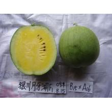ODM for Seedless Watermelon Seeds Hybrid yellow fresh  watermelon seeds export to Uganda Manufacturers