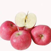 Export New Crop Good Quality Competitive Fuji apple