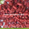 Low Sugar Pure Authentic Super Common Goji Berries