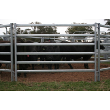 galvanized pipe horse fence panel cattle fence