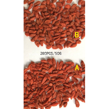 Hot Sale Dried Conventional Goji Berry