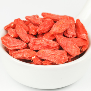Lowest Price for Dried Wolfberry Ningxia Disposable Red Wolfberry 180g export to Italy Factory