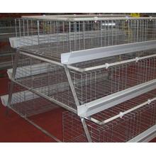 A Type Automatic Pullet Equipment