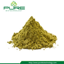 High Quality Hemp Seed Powder