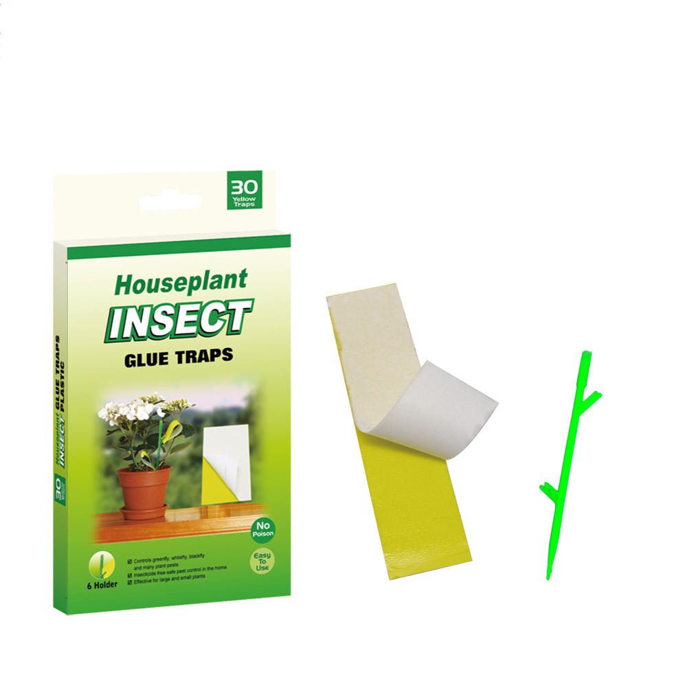 House Plant Insect Glue Traps