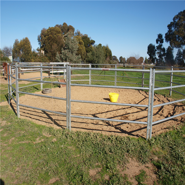 horse fence010