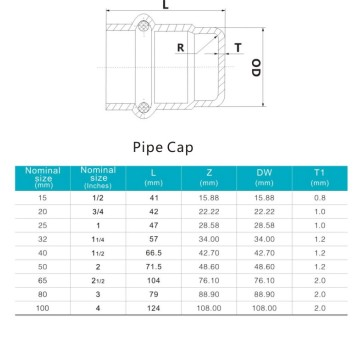 Stainless Steel Gas Cap Press Pipe Fitting