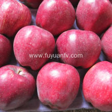 Red sweet delicious Huaniu apple