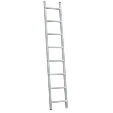 6m single straight ladder