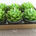 Desert Succulent Plants Shaped Simulation Candles Tea Lights