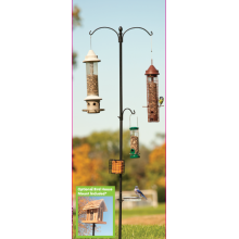 Leading for Metal Tube Bird Feeders Basic Bird Feeding Station supply to Qatar Supplier