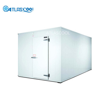 Walk in Blast Chiller Rooms and Freezer