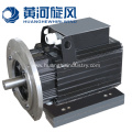 Electric-starting Permanent Magnet Synchronous Motor