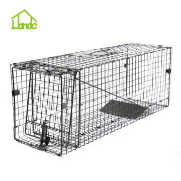 Catch And Release Live Animal Trap For Raccoons
