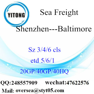 Shenzhen Port Sea Freight Shipping To Baltimore