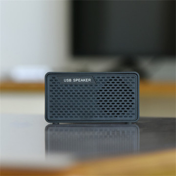 Mini Portable Loud Professional Smart Speaker