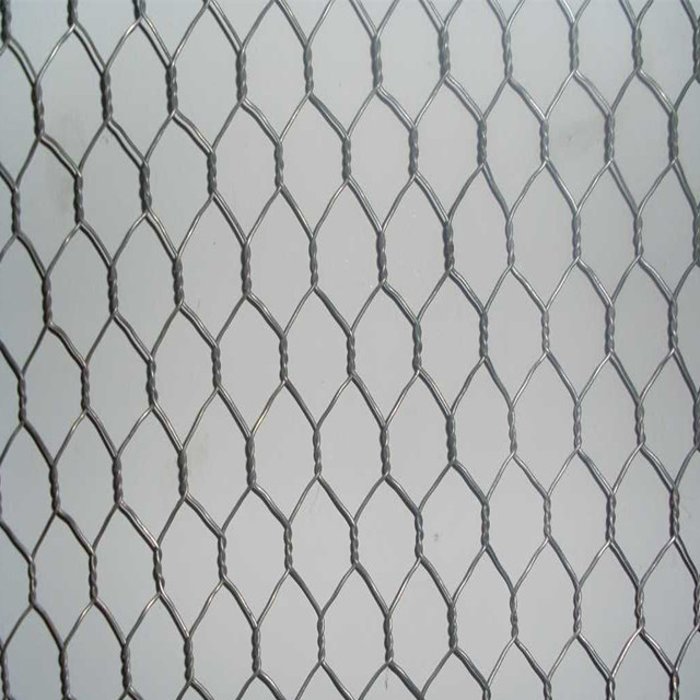 Galvanized Hexagonal Poultry Mesh Netting Used for Bird Cages