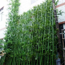Outdoor Artificial Bamboo Tree