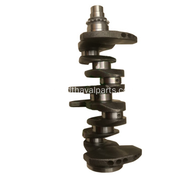 Crankshaft 1005100-EG01 For C30