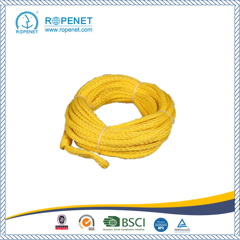 OEM Customized Water Ski Rope Hot Sale