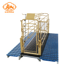 Good Quality for Steel Solid Rod Farrowing Stalls High quality solid rod farrowing stalls export to Faroe Islands Factory