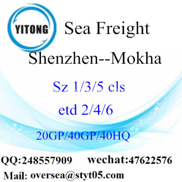 Shenzhen Port Sea Freight Shipping To Mokha