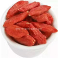 Mechanical Dried Goji Berry