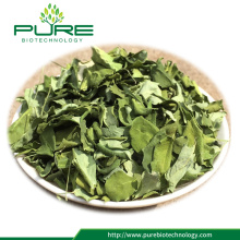 Raw Herbs Dried Moringa leaves tea
