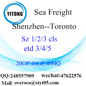 Shenzhen Port Sea Freight Shipping To Toronto