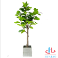 Nature Green Mini Artificial Indoor Pottedplants