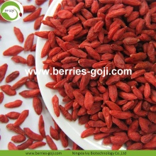 Factory Wholesale Dried Wolfberry