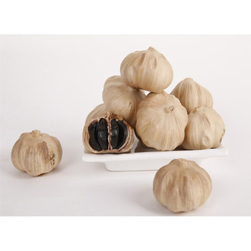 Hypoglycemic of Black Garlic
